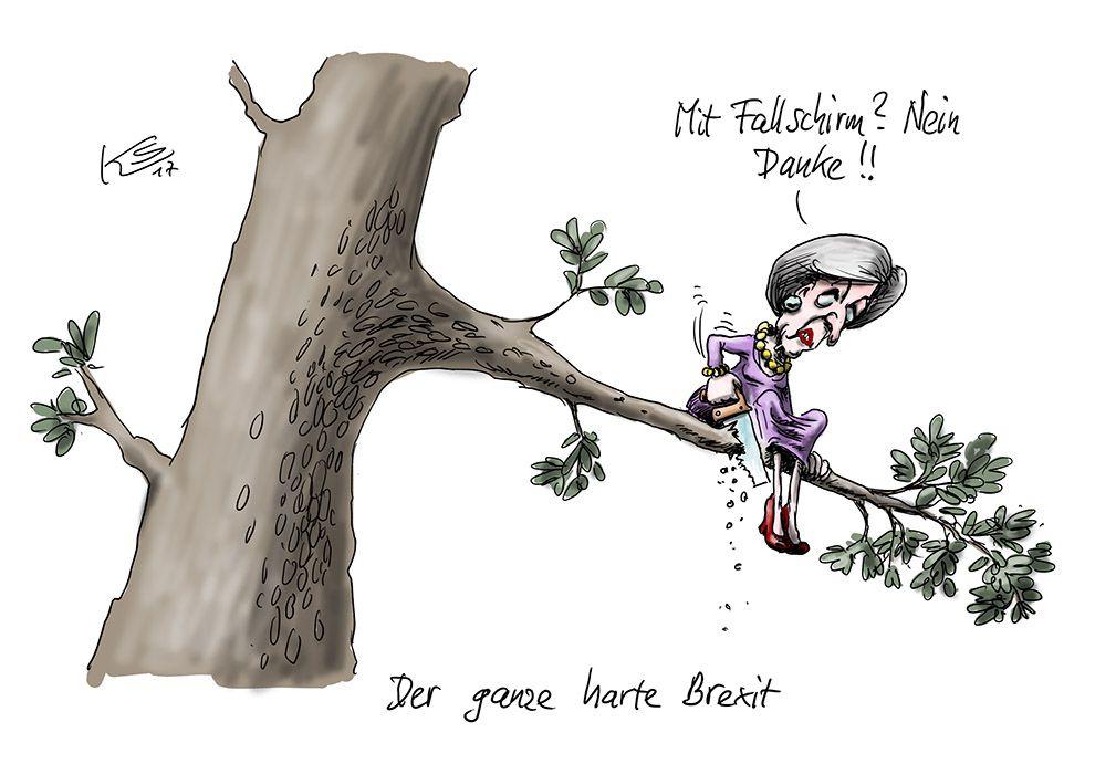 Karikatur vom 16.01.2017